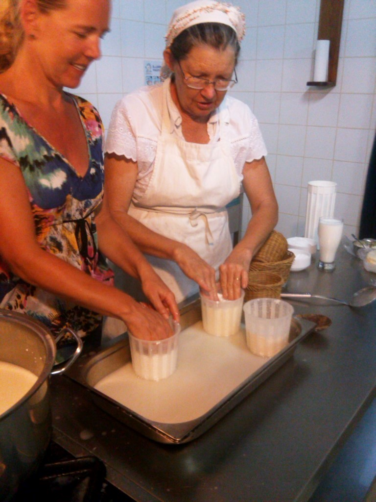 cheese making lessons for tourists Medium